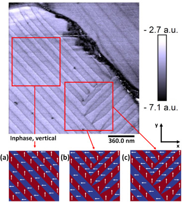 ferroelectric polarization patterns in MAPbI3